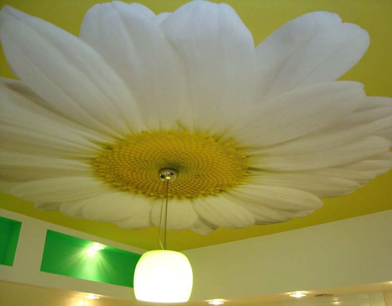 Peindre un plafond en staff devis travaux en ligne - Peintre un plafond ...